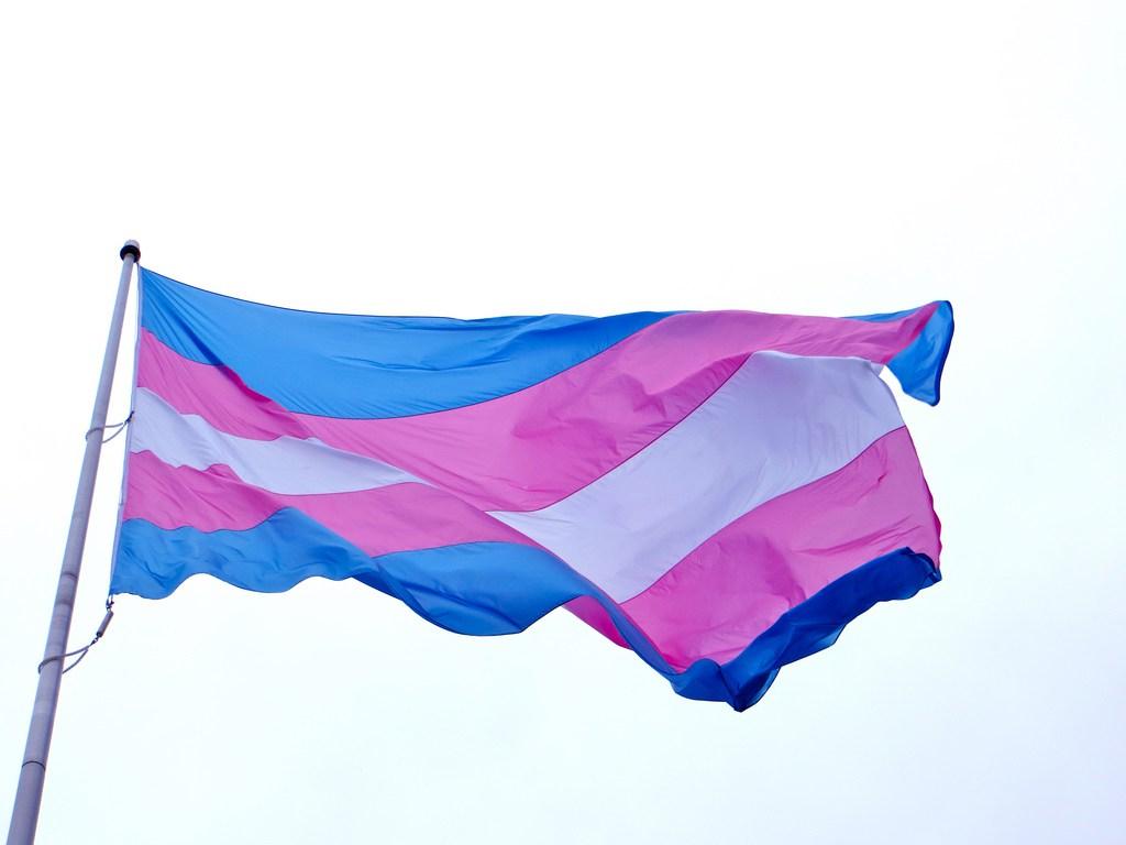 Bandera Transexualidad